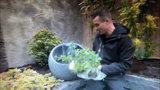 de grote tuinverbouwing muntplantjes